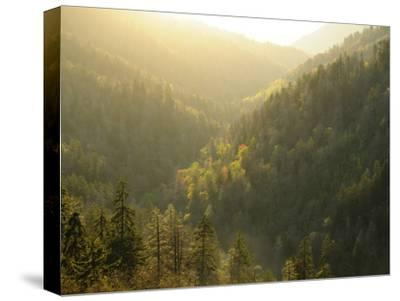 A Mountainous View in the Smoky Mountains Near Sunset