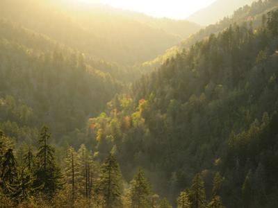 A Mountainous View in the Smoky Mountains Near Sunset by Darlyne A^ Murawski