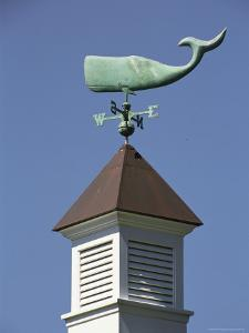 A Sperm Whale Weather Vane on a Roof Top by Darlyne A. Murawski