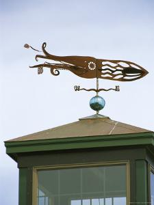 A Squid-Shaped Weather Vane Atop a Cupola by Darlyne A. Murawski