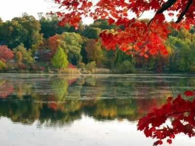 Fall Foliage and Reflections in the Arlington Reservoir by Darlyne A^ Murawski