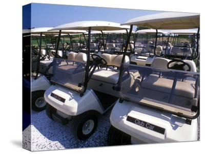 Fleet of Golf Carts Awaiting Avid Golfers, USA