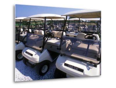 Fleet of Golf Carts Awaiting Avid Golfers, USA