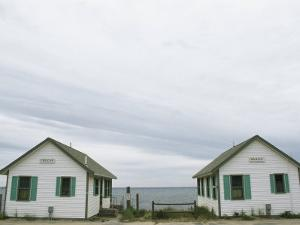 Rental Cottages Along a Cape Cod Beach by Darlyne A. Murawski