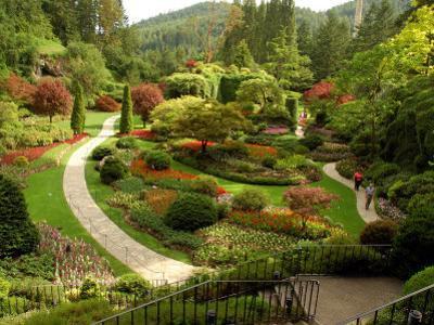 Sunken Garden at Butchart Gardnes, Victoria, British Columbia by Darlyne A^ Murawski