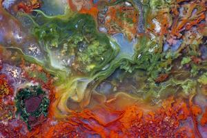 Agate in Colorful Design, Sammamish, WA by Darrell Gulin