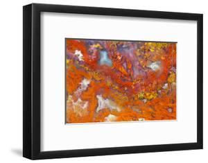 Agate in Colorful Design, Sammamish, WA by Darrell Gulin