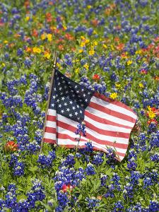 Beautiful American Flags Artwork For Sale Posters And Prints Artcom