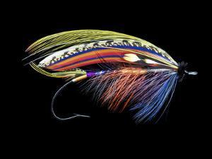 Atlantic Salmon Fly designs 'Graham's Fancy' by Darrell Gulin