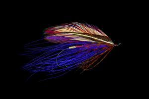 Atlantic Salmon Fly designs 'Iris Spey' by Darrell Gulin