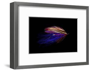 Atlantic Salmon Fly designs 'Iris Spey' by Darrell Gulin