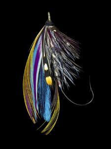 Atlantic Salmon Fly designs 'Jay Body' by Darrell Gulin