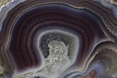 Banded Agate, Quartzsite, AZ by Darrell Gulin