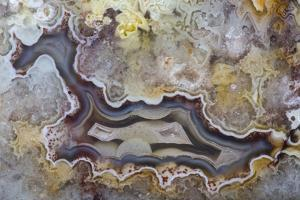 Banded Agate, Sammamish, Washington State by Darrell Gulin