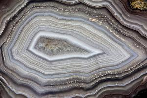 Banded Agate, Sammamish, Washington by Darrell Gulin