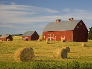 Barns and Hay Bales in Field by Darrell Gulin