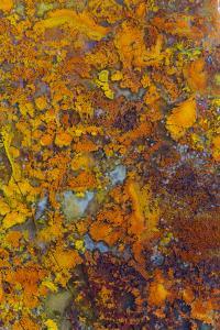 Bloody Basin Agate, AZ by Darrell Gulin