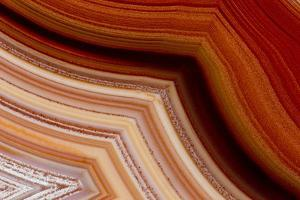 Close-Up of Fortification Laguna Agate by Darrell Gulin