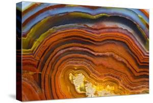Close Ups of Fortification on Crazy Lace Agate by Darrell Gulin