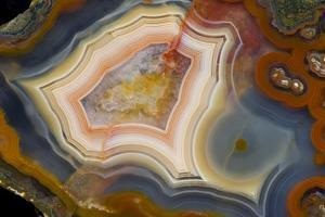 Condor Agate with Fortifcations by Darrell Gulin