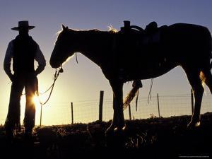 Cowboy on Horseback, Ponderosa Ranch, Seneca, Oregon, USA by Darrell Gulin