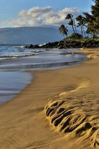 Evening light along Kamaole Beach Park II, Kihei Maui, Hawaii. by Darrell Gulin
