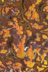 Gold Leaf Agate by Darrell Gulin