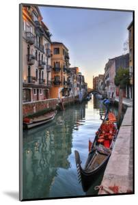 Gondolas Along the Canals of Venice, Italy by Darrell Gulin