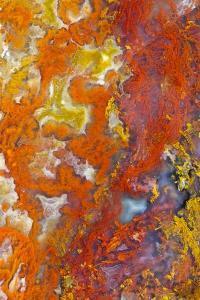 Moss Agate by Darrell Gulin