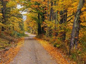 New England Road in Autumn by Darrell Gulin