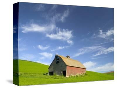 Old Barn in Wheat Field in Eastern Washington