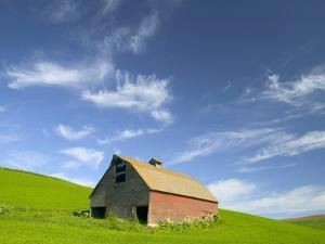 Old Barn in Wheat Field in Eastern Washington by Darrell Gulin