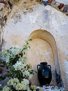 Pottery and Flowering Vine, Oia, Santorini, Greece by Darrell Gulin