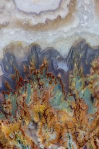 Prudent Man Agate, Origin Idaho by Darrell Gulin