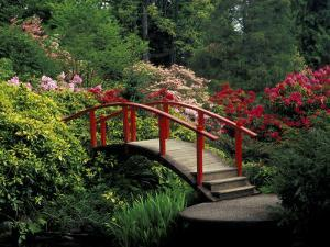 Red Bridge in Springtime, Koybota Gardens, Seattle, Washington, USA by Darrell Gulin