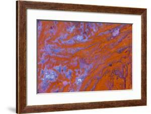 Red Moss Agate by Darrell Gulin
