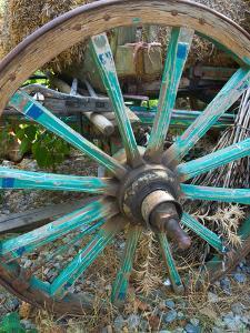 Wagon Wheels in Colorful Blues, Turkey by Darrell Gulin