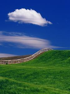 Wheat Field and Fence by Darrell Gulin