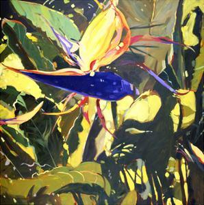 Bird of Paradise by Darrell Hill