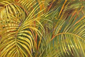 Tropical Light by Darrell Hill