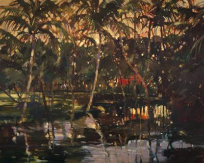 Tropical Reflections