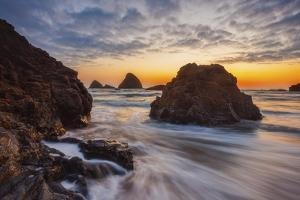 Oregon Gold Rush by Darren White Photography