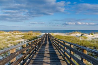 To the Gulf by Darryl Vest