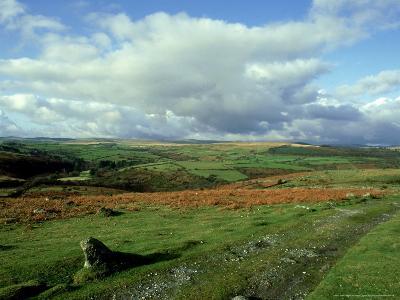 Dartmoor, Devon-David Cayless-Photographic Print