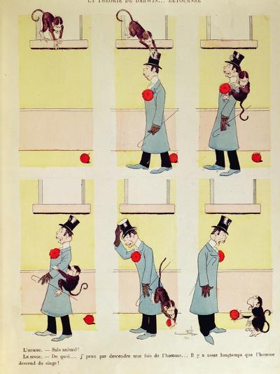 Darwin's Theory in Reverse, the Monkey's Descent from Man, 1901-Benjamin Rabier-Giclee Print