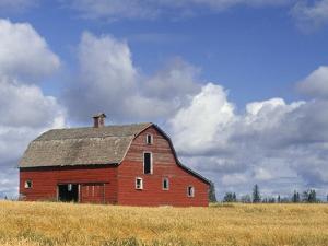 Old Barn Near Devon, Alberta, Canada by Darwin Wiggett