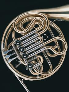 French Horn by Datacraft Co Ltd