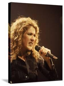Singer Celine Dion Performing by Dave Allocca