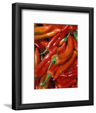 Chili Peppers, Siracusa, Italy