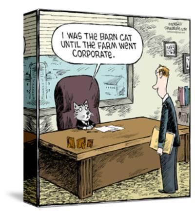 Speed Bump™ - I was the barn cat until the farm went corporate.